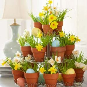 daffodil-decoration-cupcake-tray-0410-lg
