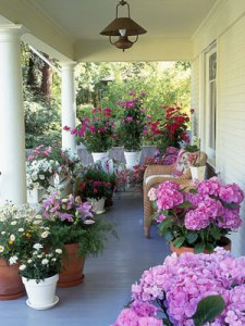 flowers-on-porch-0610-s3-medium_new
