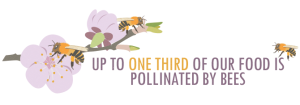 planting-for-bees-002